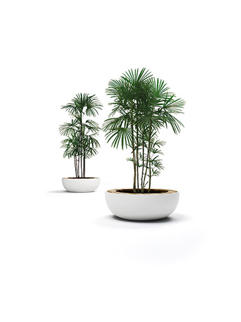 Lid Planter by LAB23